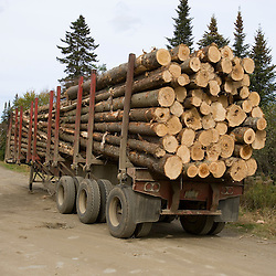 A log truck on a logging road near the Connecticut River in Pittsburg, New Hampshire.