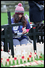 NOV 6 2012 Field of Remembrance-Westminster Abbey