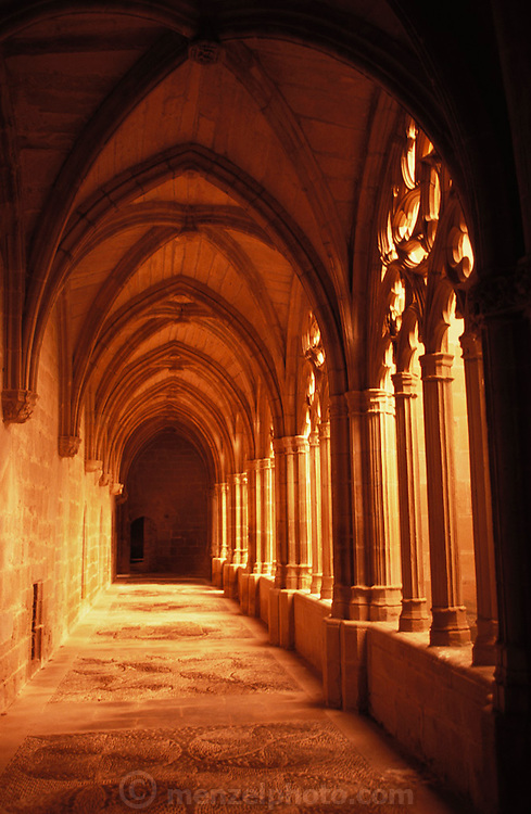 Cloisters, Monasterio de Oliva, Navarra, Spain.