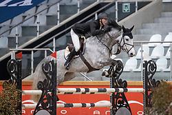 Clee Joe, GBR, Dollars for Ever 111 Z<br /> Pavo Hengsten competitie - Oudsbergen 2021<br /> © Hippo Foto - Dirk Caremans<br />  22/02/2021