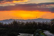 Cagliari, panorami città Foto Landscapes