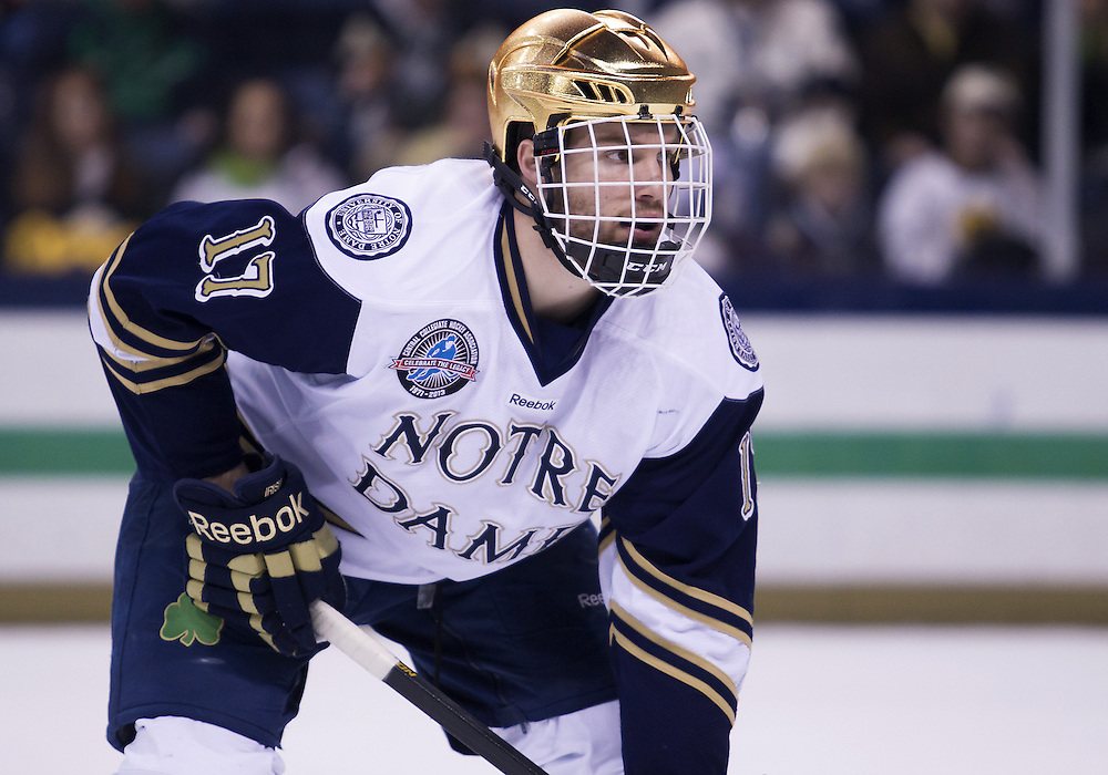 March 16, 2013:  Notre Dame left wing Nick Larson (17) during NCAA Hockey game action between the Notre Dame Fighting Irish and the Bowling Green Falcons at Compton Family Ice Arena in South Bend, Indiana.  Notre Dame defeated Bowling Green 4-3.