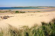 Sandside Bay beach, looking NE to Dounreay, Caithness, Highland.