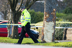 © Licensed to London News Pictures. 26/11/2017. Leeds, UK. The scene where a crash occurred involving a stolen car. Police say five people have been killed after a stolen car crashed into a tree on Saturday night. Two of the dead are 15 year old boys. The other is aged 12. Two fifteen year olds are in custody.  Photo credit: Andrew McCaren/LNP