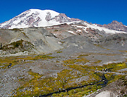 Explore Paradise in Mount Rainier National Park, Washington, USA. Skyline Trail is one of the great day hikes of the world. Mount Rainier rises to 14,411 feet elevation.
