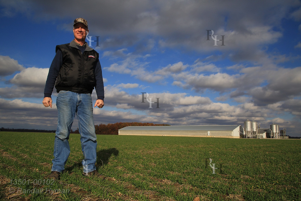 Farmer Brian Snavely stands in young winter wheat cover crop in early November near his hog buildings that supply manure injected in soil; Republic, Ohio.