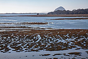 View of Morro Bay and Morro Rock from the Elfin Forest, Baywood Park, San Luis Obispo County, California, USA