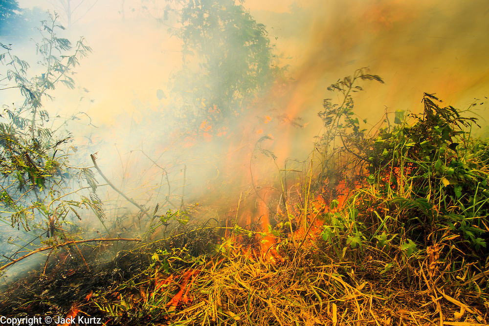 "09 APRIL 2013 - KHUNTAN, LAMPHUN, THAILAND:  A grassfire set by people who wanted to burn out weeds and dead grass from a road side burns in Khuntan, Lamphun province, Thailand. The ""burning season,"" which roughly goes from late February to late April, is when farmers in northern Thailand burn the dead grass and last year's stubble out of their fields. The burning creates clouds of smoke that causes breathing problems, reduces visibility and contributes to global warming. The Thai government has banned the burning and is making an effort to control it, but the farmers think it replenishes their soil (they use the ash as fertilizer) and it's cheaper than ploughing the weeds under.     PHOTO BY JACK KURTZ"