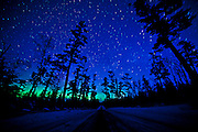 I stayed up late waiting for the Sky to clear but it did not but woke early and thought I saw a slight glow in the North even in Grand Marais so I literally jumped into the truck and got this at the Pines up the Gunflint Trail near Grand Marais Minnesota and one quick one on Elbow Lake. There is a secret to shooting these vague Northern Lights...ask me! `~)