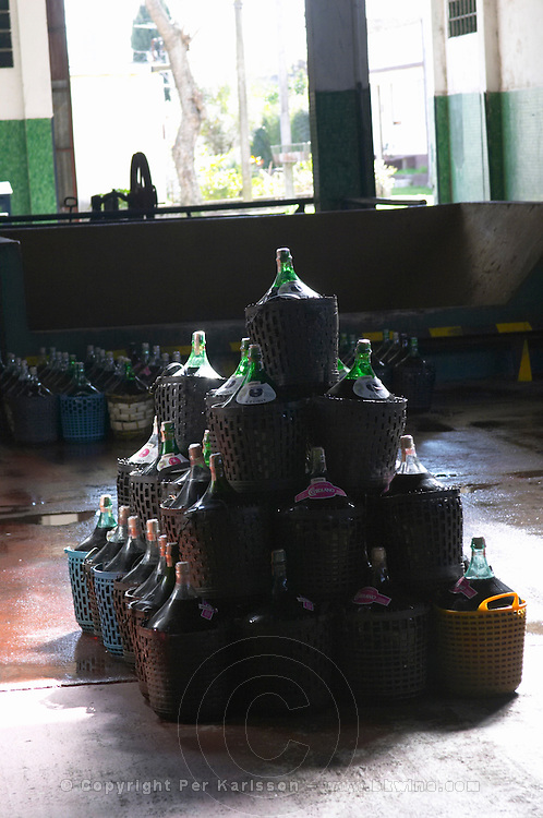 A pile of demijohns of the popular rosado wine sold locally in plastic baskets. Bodega Plaza Vidiella Winery, Las Brujas, Canelones, Uruguay, South America