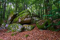 France, Saône et Loire (71), le parc naturel du Morvan, Rochers du Carnaval // France, Burgundy, Saone-et-Loire, Morvan park, Carnaval rock