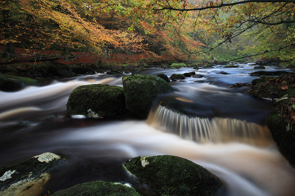 Autumn at Hardcastle Crags, Yorkshire
