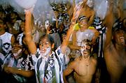 A group of Botafogo fans celebrate a win over Sao Paulo football club at the Maracana stadium, Rio de Janeiro, Brazil.