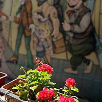 South America, Argentina, Buenos Aires. Flowers against mural in La Boca neighborhood.