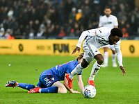 Football - 2018 / 2019 Sky Bet EFL Championship - Swansea City vs. Bolton Wanderers<br /> <br /> Nathan Dyer of Swansea City brought down by  Luca Connell of Bolton Wanderers, at The Liberty Stadium.<br /> <br /> COLORSPORT/WINSTON BYNORTH