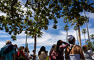 Visitors gather under trees in a plaza on the central coast of California.<br /> <br /> Photo © copyright 2019 Sid Hastings.