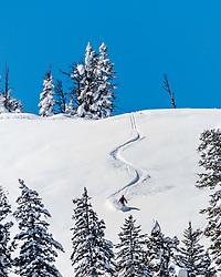 Fresh tracks, skier at Teton Pass, Jackson Hole, Wyoming