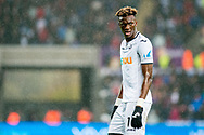 Tammy Abraham of Swansea City looks on. Premier league match, Swansea city v Leicester city at the Liberty Stadium in Swansea, South Wales on Saturday 21st October 2017.<br /> pic by Aled Llywelyn, Andrew Orchard sports photography.