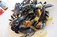 Steamed Belgian Mussels