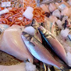 Fresh Sea Food & Fish, Sole, Prawns, Bass - Chioggia - Venice Italy
