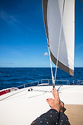 A young woman's feet while sunbathing atop a catamaran sailboat while sailing in the Guadeloupe of the French Caribbean