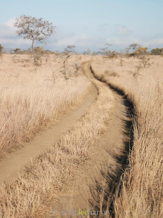 Dirt track, Chyulu Hills National Park, Kenya