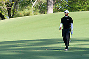 08 April 2009: After driving the ball into the fairway bunker, Tiger Woods makes the walk down the 2nd fairway. The final practice round of the 2009 Masters. Players play multiple balls from many different angles in an attempt to master possible reads for tournament days.