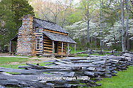 66745-04315 John Oliver Cabin in spring, Cades Cove area, Great Smoky Mountains National Park, TN