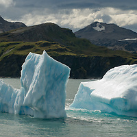 Icebergs float in the southern Atlantic Ocean near Gold Harbor, South Georgia, Antarctica.