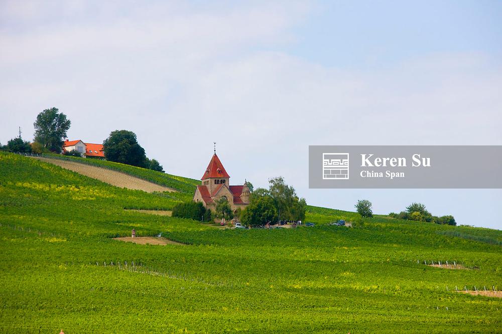 Vineyard and farmland along river Rhine, Upper Middle Rhine Valley (UNESCO World Heritage site), Bingen, Germany