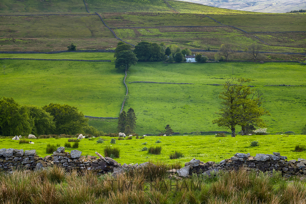 Homestead in picturesque landscape in Northumberland National Park near Walltown Crags, England
