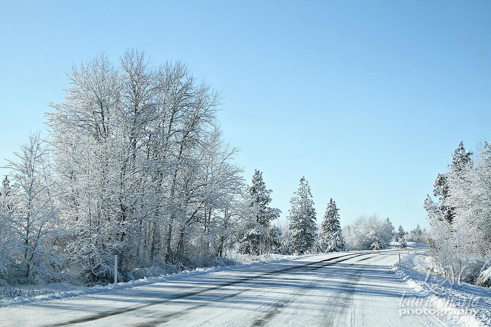 A snowy backwoods highway through a winter wonderland.