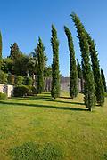 Cypress trees at villa in Tuscany