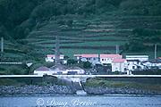 abandoned sperm whale processing plant, Pico Island, Azores Islands (Atlantic)