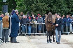 Whittington Francis, (GBR), Fernhill Highlight<br /> First Horse Inspection - Mitsubishi Motors Badminton Horse Trials <br /> Badminton 2015