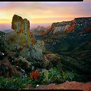 Sunrise on top of the Lost Mine Trail, Big Bend National Park. 4x5 Kodak Ektar 100. photo by Nathan Lambrecht