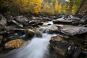 Bass Creek, Montana.