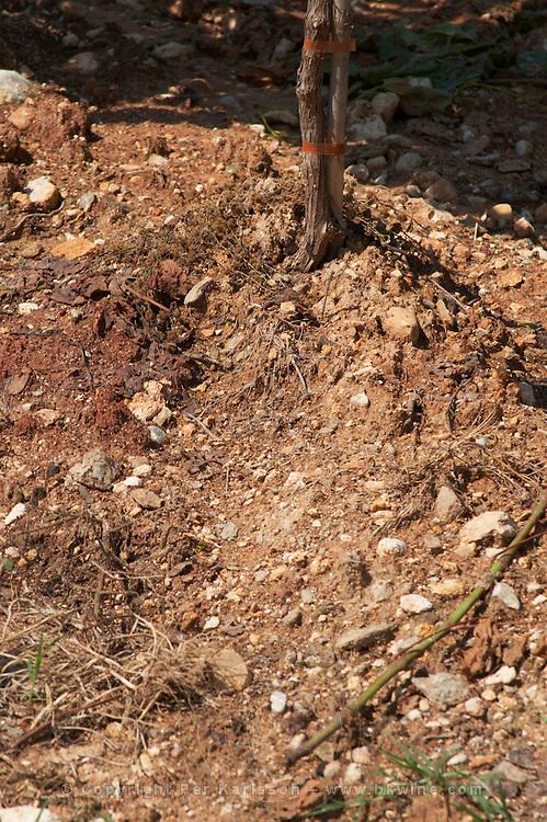 Soil detail. Stony. Sand. Ktima Pavlidis Winery, Drama, Macedonia, Greece