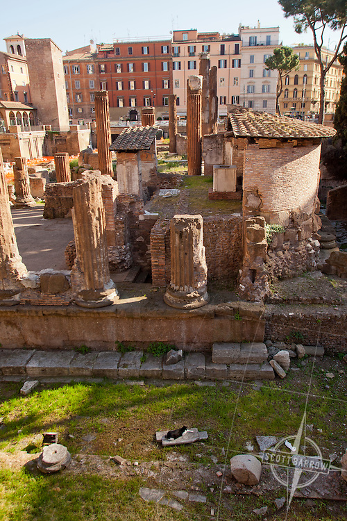 Largo di Torre Argentina is a square in Rome, Italy, that hosts four Republican Roman temples, and the remains of Pompey's Theatre. It is located in the ancient Campus Martius.