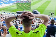 A hold your hands on your head moment for a Brighton fan during the live beamback at the American Express Community Stadium in Brighton for the Sky Bet Championship match between Middlesbrough and Brighton and Hove Albion at the Riverside Stadium, Middlesbrough, England on 7 May 2016. Photo by Bennett Dean.