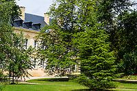 France, Saint-Émilion. Chateau Siaurac vineyard.