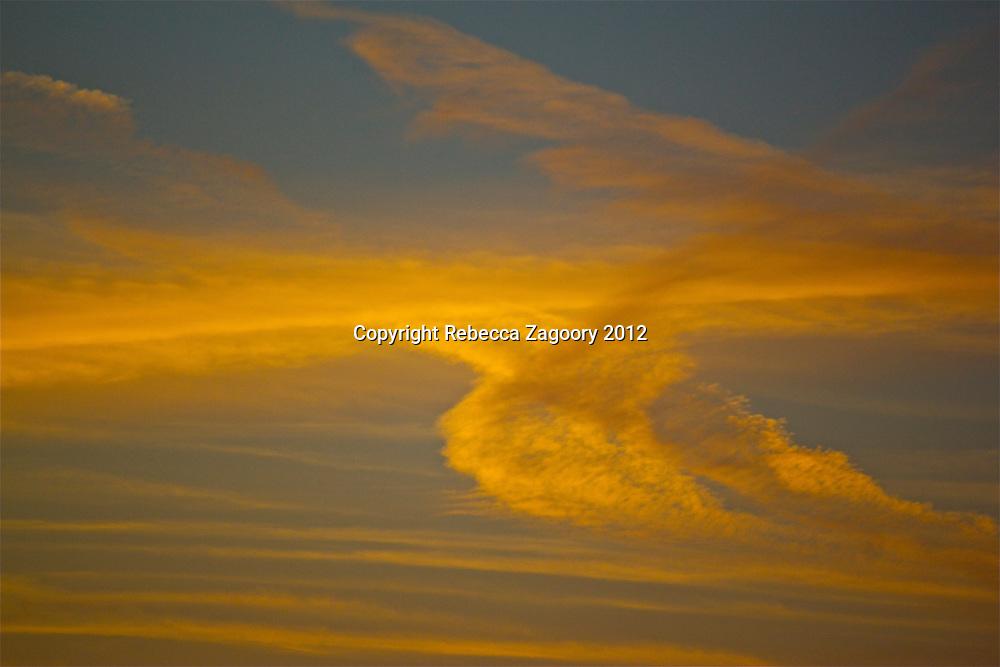 A feathered sky Santa Monica