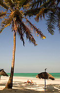 Thatched beach umbrellas and traditional sunbeds made from coconut wood.<br /> Paje Beach, Zanzibar, Tanzania