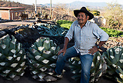 "At 10 years old, Pascual Garcia Martinez became one with mezcal. Through the helping hands of his father, Garcia Martinez, now 61 and of Santa Ana, sleeps right by the product he produces. ""I'm fortunate to be able to make what I love and live from it... it's something not many people here in Mexico are able to do,"" Garcia Martinez said. But that may be changing. Over the last few years, a spike in popularity across large swaths of the United States has put a strain on what was only produced for small towns throughout rural Mexico just five years ago."