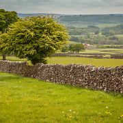 Rural english countryside.
