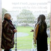 1/10/2019 TCD Long Room Hub Anthea Butler Irish Slaves in America