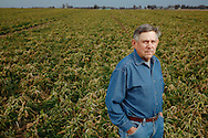 Ralph Upton Jr. poses for a portrait on a portion of his land filled with cover crops near Springerton, Illinois. The use of cover crops in farming is growing in popularity due to the plants' ability to manage soil erosion.