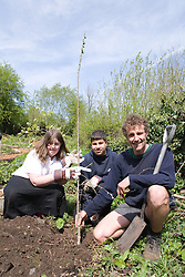 Planting a tree at St Ann's Community allotment donated by Sims metal in conjunction with the Nottingham big spring clean campaign 2007,