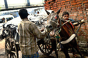 Two men are moving a heavy load of half-processed leather using a severed horse pulling a wooden cart to a new plant for further processing in Jajmau Industrial Area, Kanpur, Uttar Pradesh. Knowing whether children were employed in the process is the real challenge when outsourcing leather in Kanpur.