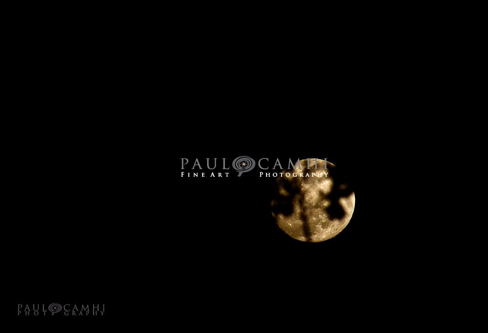 fine art photography by paul camhi